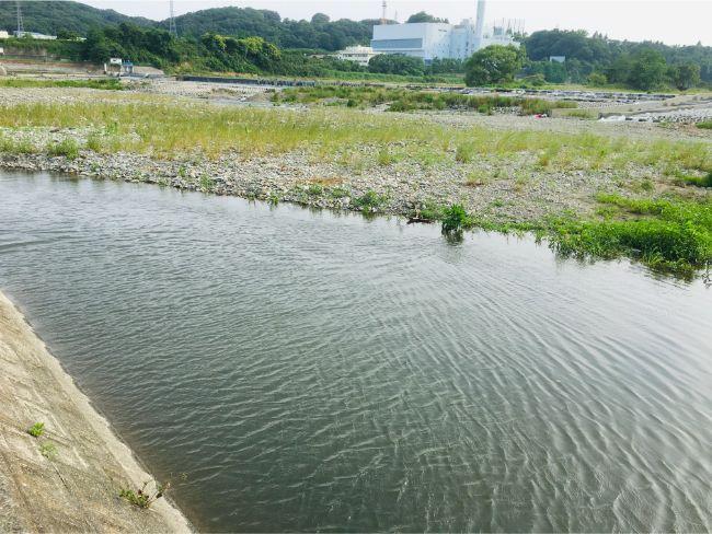 多摩川是政橋付近