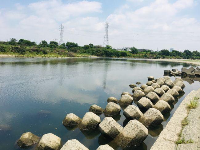 多摩川の釣りポイント登戸~二子玉川②