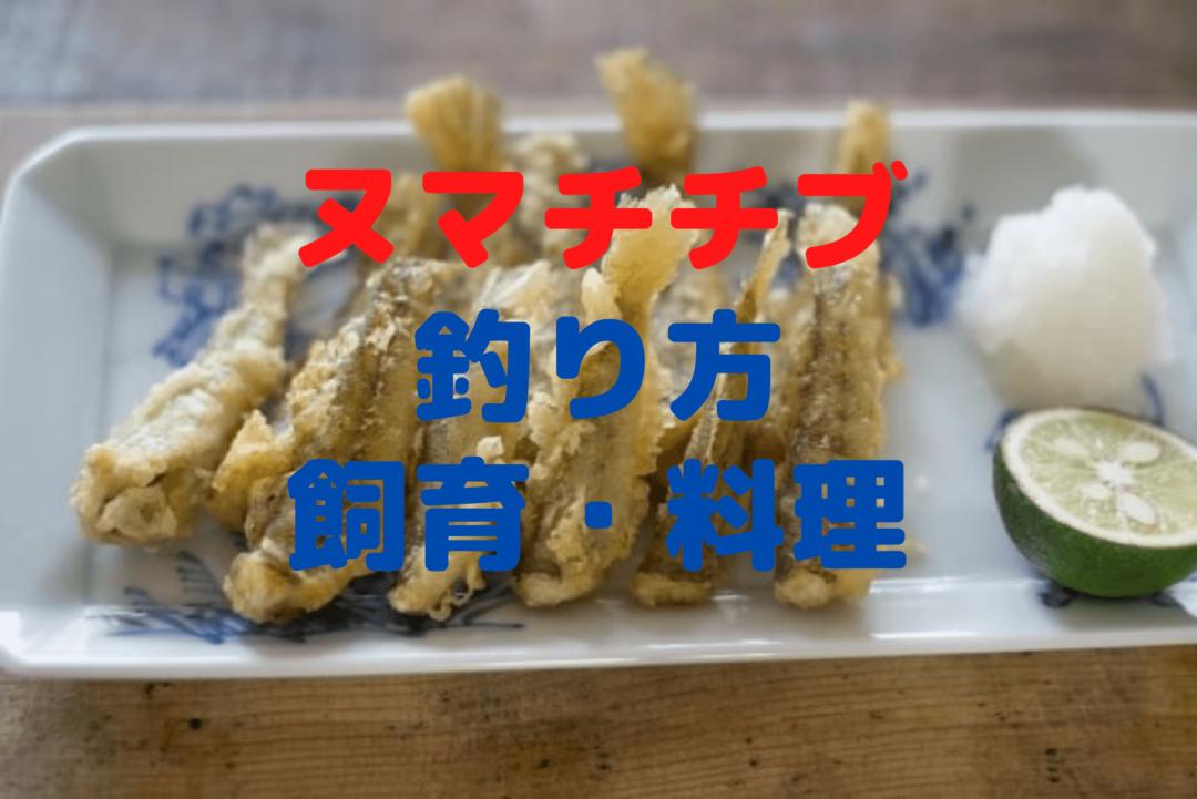 ヌマチチブの釣り方【仕掛け・飼育方法・料理紹介】