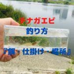 【2020年】テナガエビの釣り方『餌・仕掛け・場所・時期』紹介