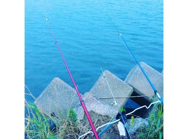 多摩川 うなぎ釣り ポイント