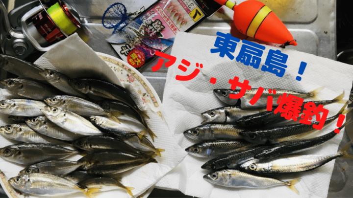 【2020年】東扇島西公園アジ・サバ爆釣【夜釣りでタチウオの反応あり】