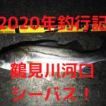 鶴見川河口 シーバス