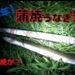【2020年】多摩川の六郷土手で蒲焼うなぎ釣り!【ついに出た!】