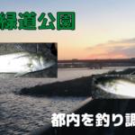東海緑道公園 釣り