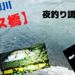 【ガス橋下流】多摩川で投げ釣り!シーバス、ハゼの釣果【2020年】