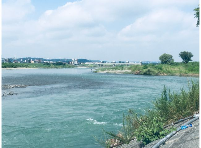 調布市の多摩川