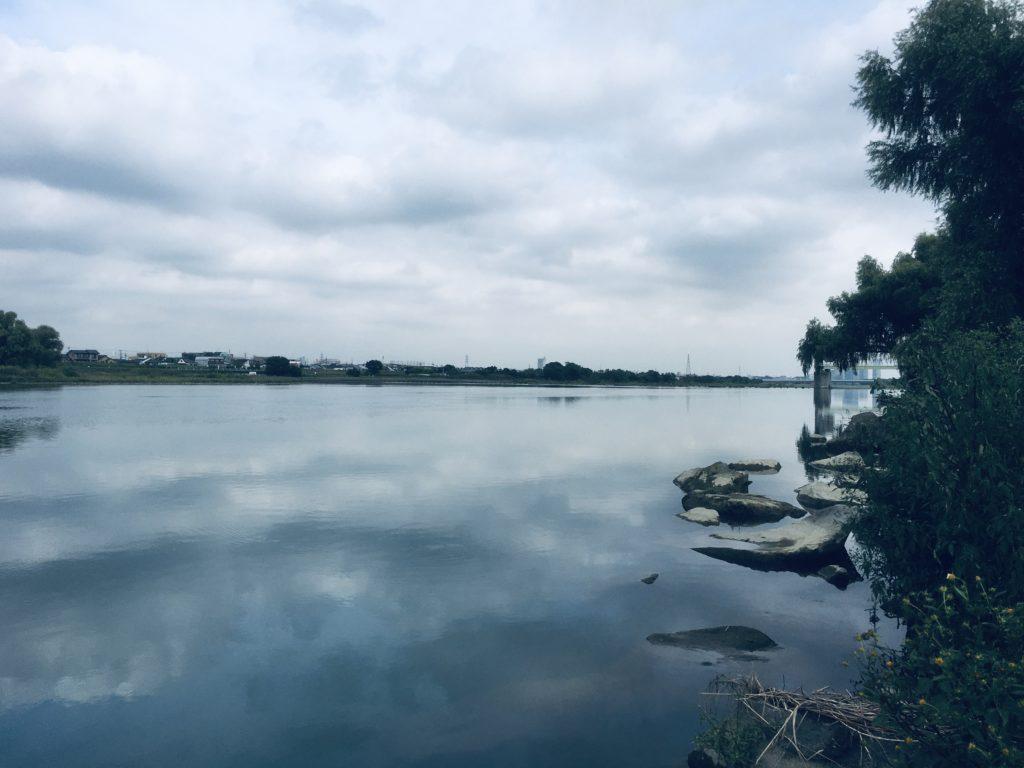 多摩川 宿河原堰 上流