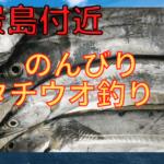 八景島 タチウオ