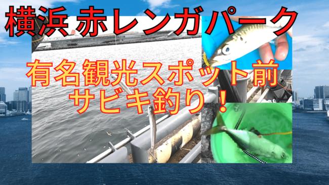 赤レンガパーク 釣り