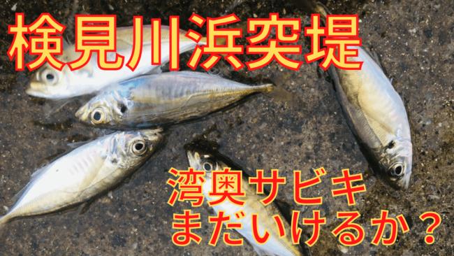 検見川浜突堤 釣り