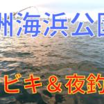 若洲海浜公園 釣り