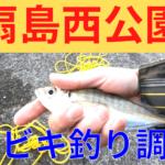 東扇島 釣り